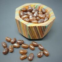 Gourmet CAPPUCCINO Jelly Candy Jelly Beans 1/4 LB to 10 LB Bags BULK Best Price