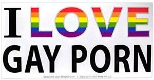 [10-Pack] I Heart Gay Porn Funny Prank Bumper Sticker 3x6 Decal by Witty Yeti
