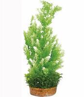 Decorazione pianta finta PHYTOS 6 cm 9X9X38H per acquario dolce o marino