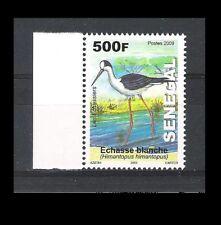 SENEGAL (2009) - 1V (**MNH) - OISEAUX / LES ECHASSIERS - L'ECHASSE BLANCHE