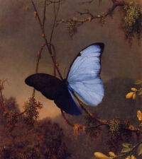 ZWYH282 charm butterfly in hill landscape hand painted oil painting on canvas