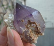 Gw- EXCELLENT Quartz var. AMETHYST SCEPTER on MATRIX - Ghazni, AFGHANISTAN