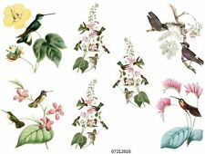 AsSoRteD HuMmiNgBiRds ShaBby WaTerSliDe DeCals