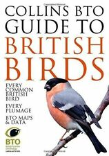 Collins BTO Guide to British Birds, Good Condition Book, Stancliffe, Paul, Sterr