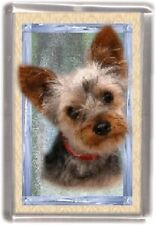 Yorkshire Terrier Fridge Magnet Design No2 by Starprint