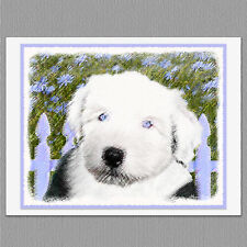 6 Old English Sheepdog Blank Art Note Greeting Cards