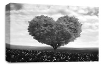 """FLORAL FLOWER Canvas Wall Art Picture Grey Black White Love Heart Tree 30 x 20"""""""