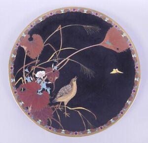 Fine Old Antique Japanese Meiji Period Cloisonné Plate 19th Century