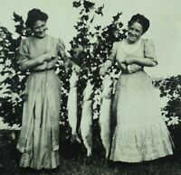 Circa 1910 RPPC ID'd Ladies With Large String of Fish Real Photo Postcard P37
