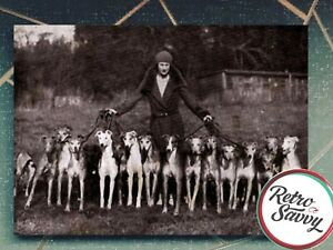 Greyhound Print - Vintage Photo - Whippet Gift - Dog Lover - 7x5 Print