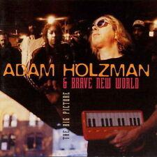 ADAM HOLZMAN / The Big Picture