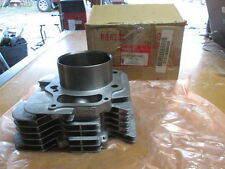 NOS Honda OEM Cylinder 1998 1999 2000 2001 2002 2003 2004 TRX450 12100-HN0-A00