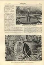1895 Mr Sowerby Sitting On Leaf Victoria Regia Pandy Mills Forbes Robertson