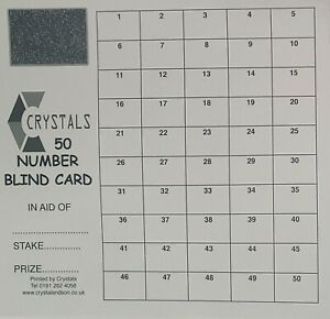 BLIND CARD 1 - 50 SCRATCH CARD X 5  - 50 NUMBER DOMINO CARD FUNDRAISING