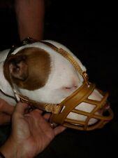 Baskerville tan ultra 4 muzzle pitbull