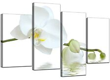 Large White Orchids Green Canvas Wall Art Pictures Set Prints XL 4134