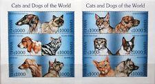 GHANA 1997 Klb 2625-36 MS 1990-91 Katzen Cats domestic Animals Fauna Tiere MNH