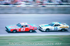 1975 DAYTONA 400 8x10 PHOTO NASCAR #43 RICHARD PETTY STP DODGE RACE WINNER #15