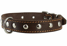 "Genuine Leather Dog Collar Studded Brown 14""-17"" size 1""wide for Medium Dogs"