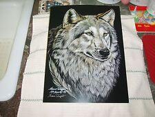Scratchboard Art, Grey Wolf, Limited Edition, 182 / 500, Nanci Wright Signed 97