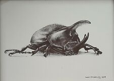 SARAH STRIBBLING, Original Ink on Paper, Hercules Beetle, Signed