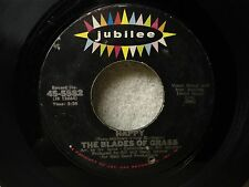 The Blades Of Grass 45 Happy / That's What A Boy Likes Clean 1967 Pop Orig!