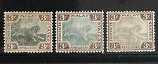 Malaya 1900-01 Federated Malay States FMS Tiger 3V 3c shades MH CCA SG#16 M1790