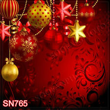 Christmas 10'x10' Computer-painted Scenic Photo Background Backdrop SN765B881