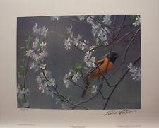 Robert BATEMAN Baltimore Oriole & Plum Blossoms LTD art print
