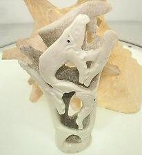 "5.25"" Genuine Master Hand Carved Hawaiian Humpback Whales Deer Antler Sculpture"
