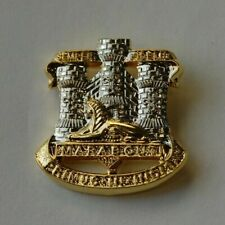 Devon & Dorset Regiment - Regimental Lapel Pin Badge