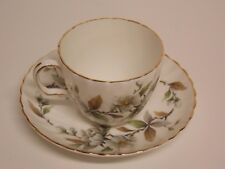 """ROYAL ADDERLEY"" FINE BONE CHINA TEA CUP & SAUCER! ""ARCADIA"" PERFECT!"
