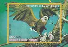 Timbre Oiseaux Guinée équatoriale o lot 10378