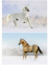 Pack Of 20 Horse Christmas Cards - Pack A