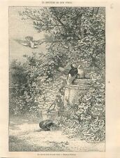 Un coin de Jardin de mon Voisin Dessin de Karl Bodmer  GRAVURE PRINT 1866