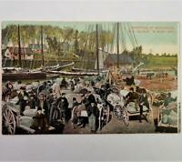 Antique Postcard View of Shipping At Montague Prince Edward Island Canada
