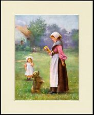 YORKSHIRE TERRIER BEGS FOR LADY CUTE LITTLE DOG PRINT MOUNTED READY TO FRAME
