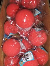 1 Dozen ( 12 ) Toy Party Fun Circus Clown Red Nose  - Party Favor -Red Nose day