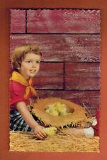 Carte Postale glacée - Enfant - Poussins - Chapeau - Paille - (A.77)