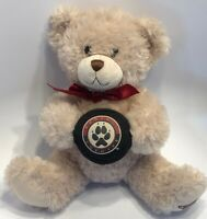 "Arizona Phoenix Coyotes Build A Bear BABW Teddy Plush Stuffed Holds Puck 11"" NHL"