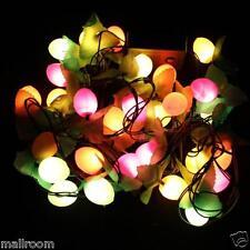 28LEDs 3M Obst LED bunte String Weihnachten Licht/Hochzeit/Party Lichterketten C