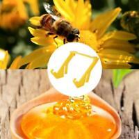 Plastic Bee Honey-Bucket Stand Rack Frame Grip Holder Beekeeping Beekeepers Tool
