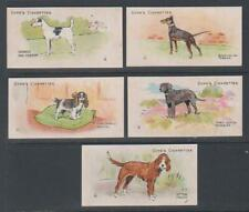 More details for cigarette cards cope 1912 dogs of the world - (5 cards) 6-10
