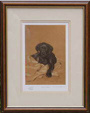 "LABRADOR RETRIEVER BLACK PUPPY DOG FRAMED LIMITED EDITION PRINT ""Home Comforts"""