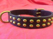 Dog collar BLACK BRASS STUDS 20 inch long X 1 staffordshire Bull Terrier