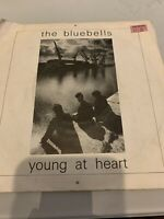 """THE BLUEBELLS - YOUNG AT HEART - 1984 LONDON RECORDS - LON 49  VINYL 7"""" EXC COND"""