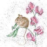 Field Mouse Blank Birthday Greeting Card – The Pea Thief by Wrendale Designs