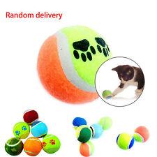 Funny Dog Toy Tennis Balls Run Catch Throw Play Toys Chew Toys Pet Supplies