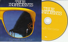 TRUE INGREDIENTS Through The Lens 2014 UK 12-trk promo CD Aina Roxx