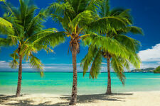Palm Tree Beach Blue Seascape Canvas Print Painting Home Decor Wall Art Picture